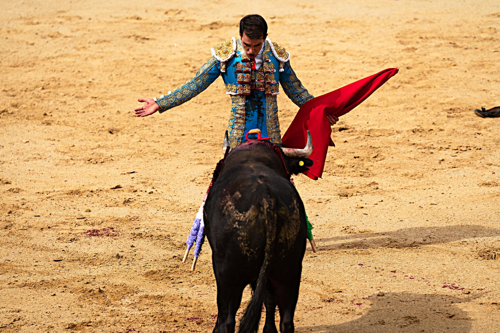 Bullfight02_WEB