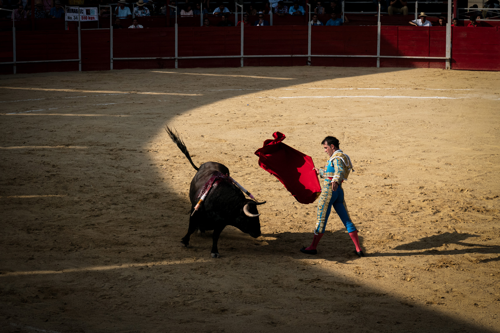 Bullfight05_WEB