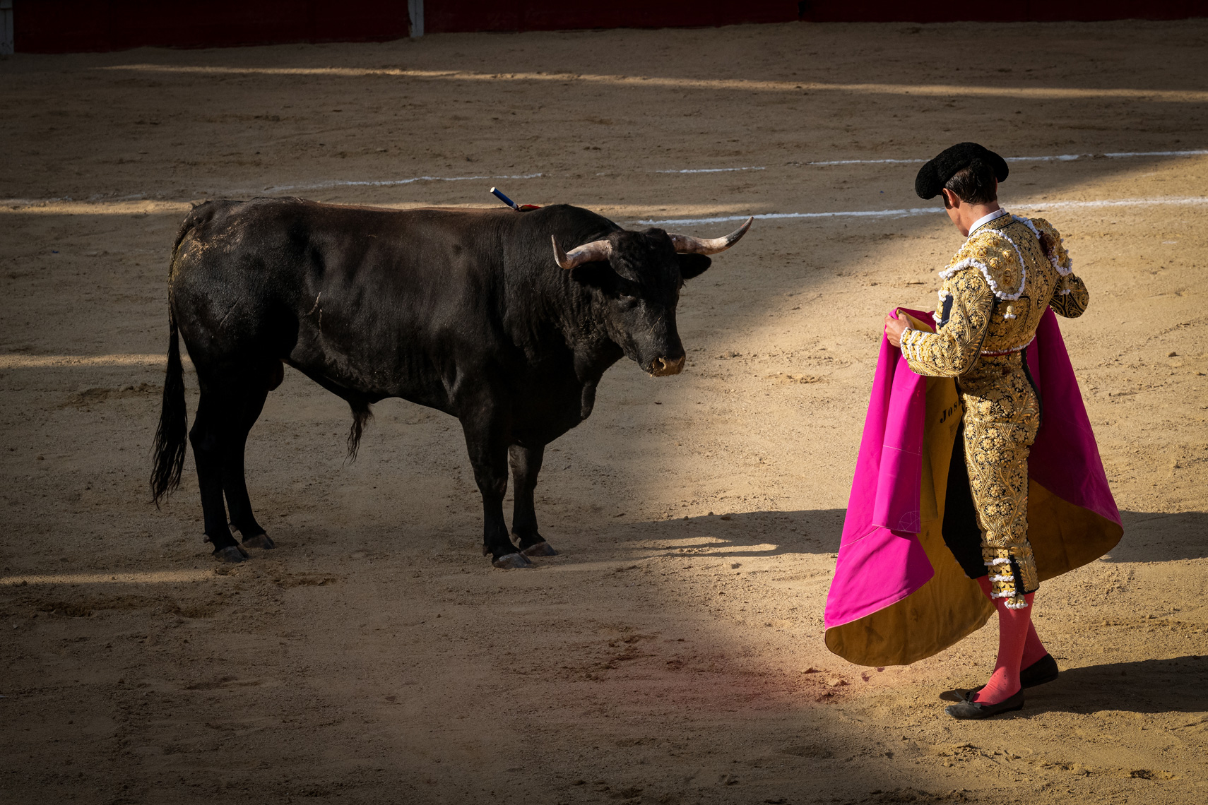 Bullfight07_WEB