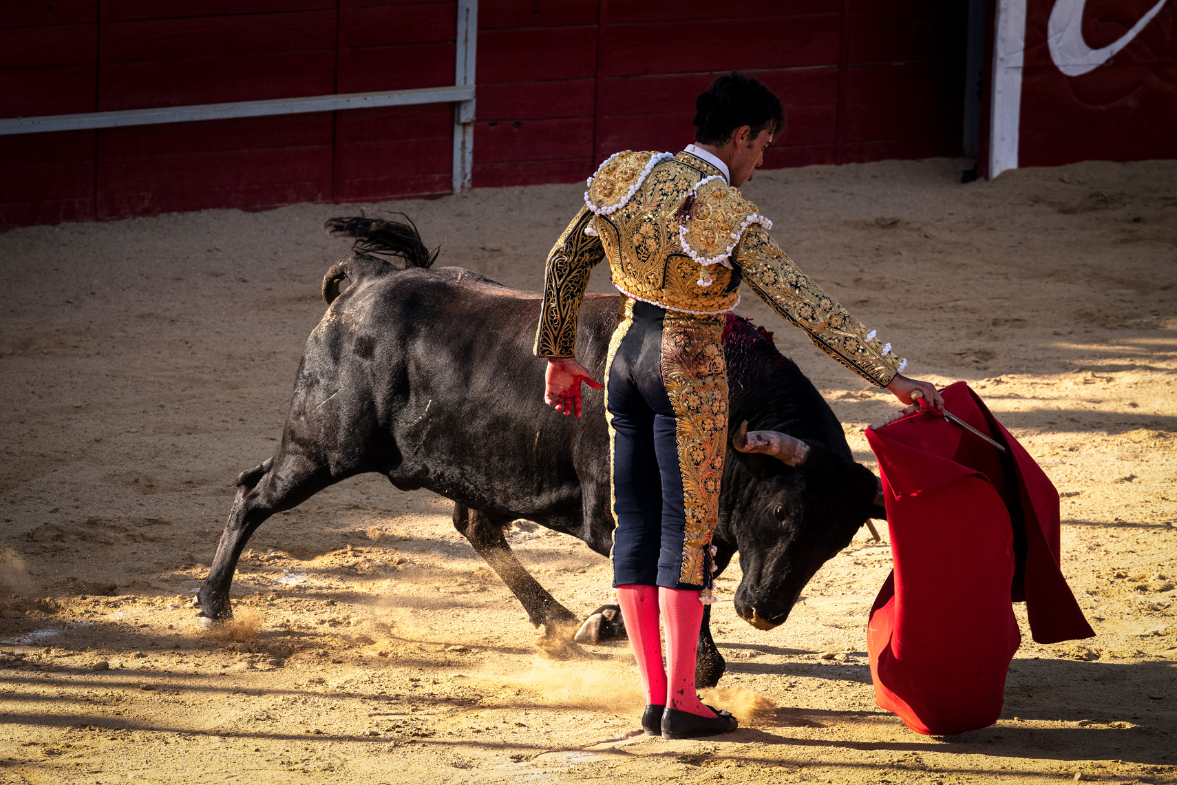 Bullfight08_WEB