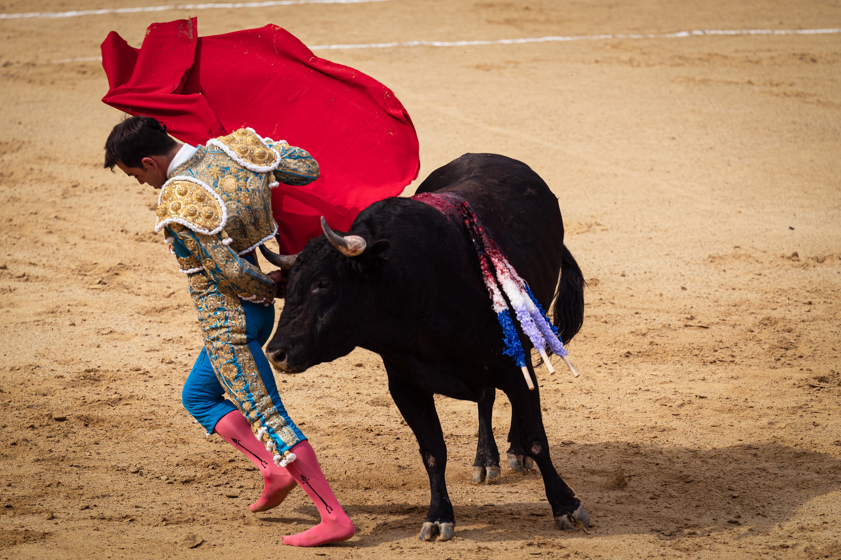 Bullfight11_WEB