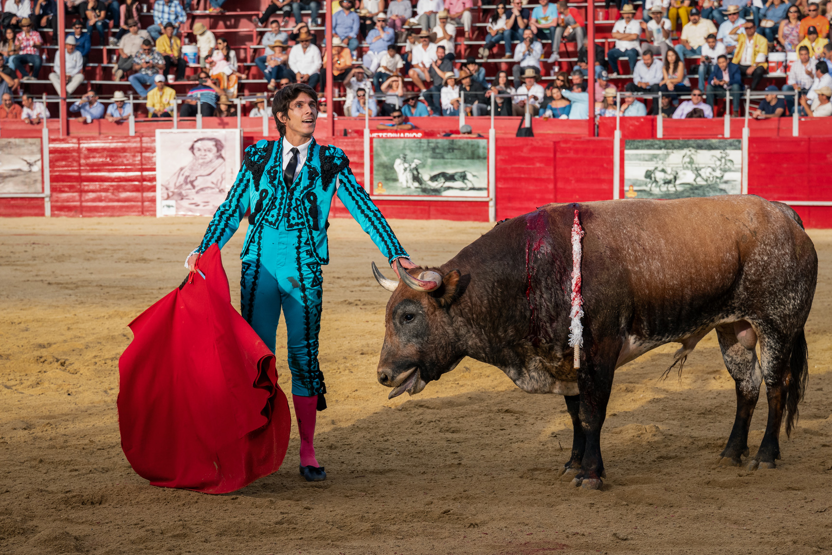 Bullfight12_WEB