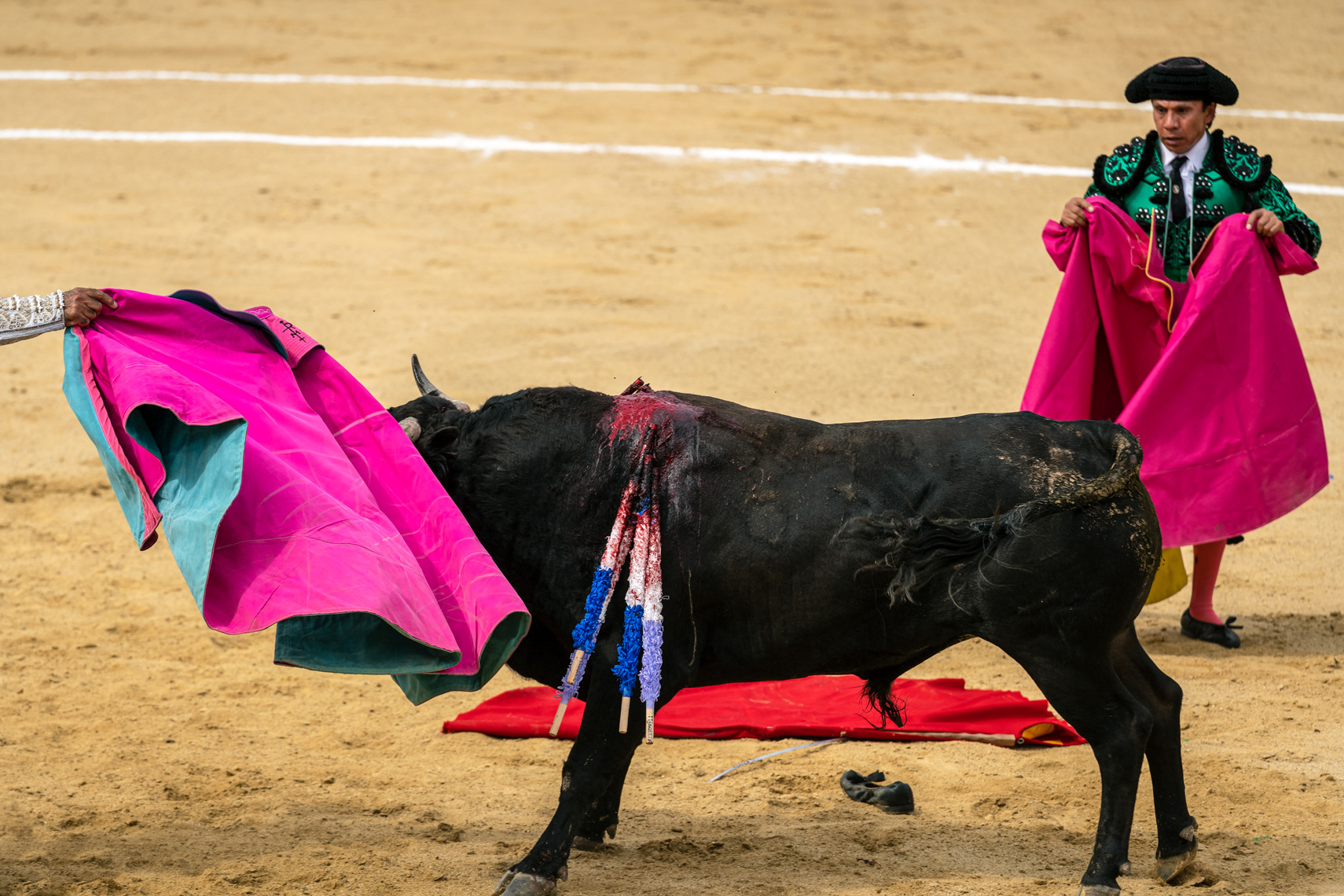 Bullfight14_WEB