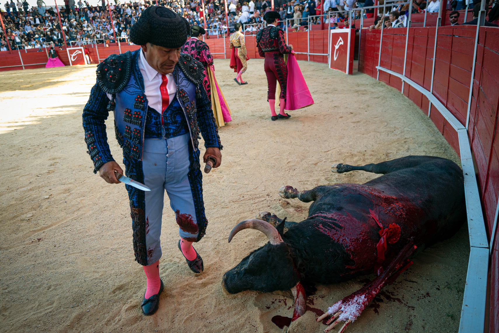 Bullfight16_WEB