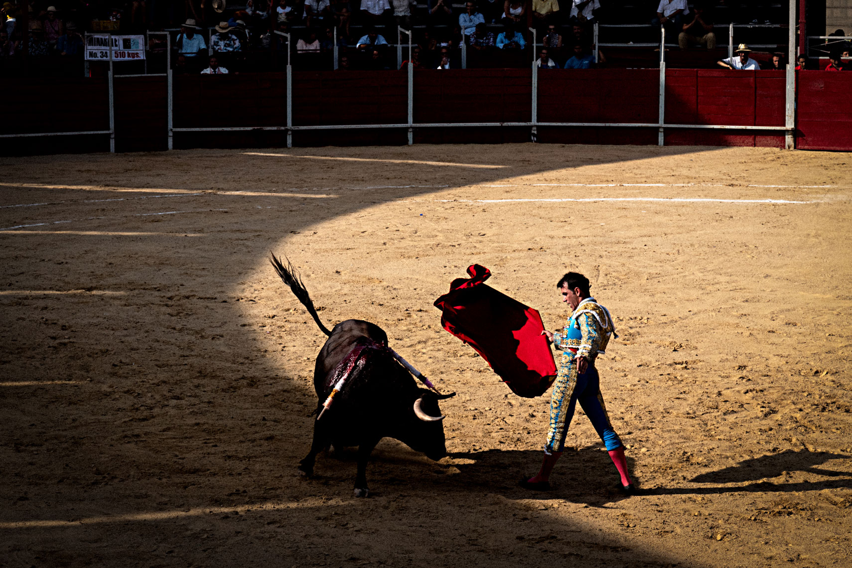 Bullfighting2