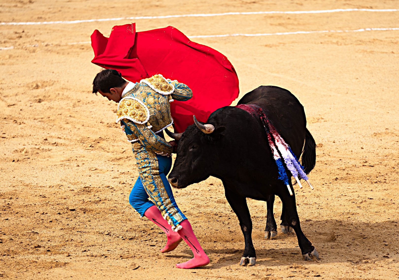 Bullfighting4